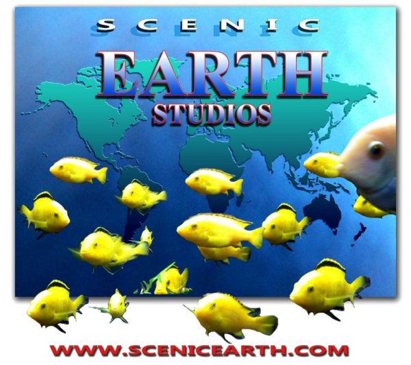 Scenic Earth Studios Fine Art Gallery